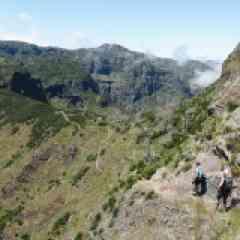 TRAIL VOLCANIC CHALLENGE À MADÈRE - <p>L'île volcanique de Madère est réputée pour ses montagnes luxuriantes qui ne sont pas sans rappeler l'île de la Réunion. L'île offre un potentiel extraordinaire et une variété de terrains recherchée des traileurs. Les sentiers variés entre côtes, forêts, cultures, villages ou crêtes acérées, parfois paisibles le long de levadas agrémentées de tunnels ou par endroit exigeants avec des séries de marches en pierres ou dominant des précipices, offrent aux sportifs une expérience inoubliable. Voici une grande traversée de l'île d'ouest en est par ses plus beaux parcours ; un Volcanic Challenge limité à 18 traileurs ! À l'encadrement, vous retrouverez Damien Poulet, ultra traileur et accompagnateur en montagne.</p>