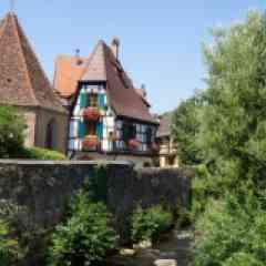 Alsace Médiévale : Villages, Châteaux et Forteresses Médiévales - <p>Les villages Alsaciens sont réputés pour être parmi les plus beaux villages de France. Cette randonnée propose de les découvrir avec un parcours au coeur du vignoble d'Alsace. Celui-ci s'étend sur les pentes des Vosges, de 200 à 400 mètres d'altitude sur plus de 14 000 hectares. La vigne y fut introduite dès le moyen âge par les légions de l'empire romain. Rapidement, les vins ont été réputés parmi les plus appréciés d'Europe. Vous pourrez les déguster tout au long de la semaine, au fil des villages, en découvrant également les cités médiévales aux ruelles fleuries, les églises romanes ou gothiques, les maisons renaissance, et bien sûr les winstubs traditionnelles et chaleureuses. Une randonnée animée, joyeuse, pleine de couleurs !</p>
