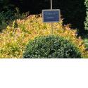 """La grange d'Ychippe - Un gîte zéro déchet pour 12 personnes dans l'Ardenne belge.  Zéro pression - plus de sens - plaisirs simples et authentiques - du temps pour soi et la nature - saveurs et culture - partage et passion. Découvrez un mode de vie plus en cohérence avec la nature et l'environnement : - Ateliers zéro déchet (cosm'éthiques, produits sanitaires, ..) - Circuit zéro déchet chez les commerçants - Pour les enfants: randonnées pour les z'héros du déchet, jeux de piste ou chasse au trésor - Découverte d'un estaminet zéro déchet et cuisine sauvage - """"Les Sentiers d'art"""" : randonnées en boucle parsemées d'oeuvres land'art réalisées par des artistes belges et internationaux."""