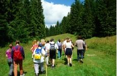 Séjour rando nature - <p>Séjour de 6 jours / 5 nuitsen pension complète dans les Montagnes du Jura.</p> <p>Partez à la découverte des montagnes du Jura !</p> <p>Prenez le temps de découvrir une nature généreuse et apaisante,</p> <p>dans des paysages de combes, de crêts, de forêts, des lacs, de rivières et de cascades...</p> <p>Appréciez les points de vue et les belvédères.</p> <p>8 demi-journées de randonnées pédestres encadrées par un accompagnateur moyenne montagne.</p> <p>Hébergement en village vacances tout confort, en chambre double, pour un séjour détente tout inclus.</p> <p></p>