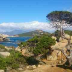DECOUVERTE LITTORAL CAMPOMORO - <p>Le plein d'idées pour vos vacances !<br /> Entre Plages de sable fin, criques plongeant sur la mer et maquis verdoyant, découvrez une des régions les plus typiques de Corse propice à la découverte de la gastronomie, de la culture, du patrimoine et du vin.<br /> Les offices de tourisme de Propriano, Sartène, et Olmeto sont à votre disposition pour vous faciliter vos vacances !</p>