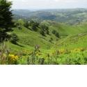 Des bords de la Jordanne aux Grands Espaces du volcan Cantal en 4 jours, 3 nuits - <p>S'élevant de 670 mètres à 1783 mètres, sur de bons chemins, cette randonnée en toute liberté de 4 jours, 3 nuits propose une découverte des différents paysages de la vallée de La Jordanne et du volcan cantalien : fond de vallée à Saint Simon, forêts pentues, plateaux avec ses pelouses d'altitude, crêtes et point de vue exceptionnel au sommet du Puy Mary. Vous serez hébergés dans trois maisons d'hôtes confortables, témoins du passé et très différentes les unes des autres. Les gens passionnés qui vous accueillent en maisons d'hôtes auront à coeur de vous faire partager les richesses naturelles et culturelles de ce territoire.</p>