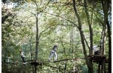 ILE DE LOISIRS DE LA CORNICHE DES FORTS - Loisirs - Activités de plein air