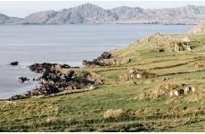 PÉNINSULES DE L'OUEST IRLANDAIS - <p>Ce séjour en randonnée liberté vous emmène au coeur de l'ouest irlandais, à la découverte des péninsules de Beara, d'Iveragh et de Dingle battues par les vents, parmi les paysages les plus sauvages d'Irlande. Durant votre séjour, votre véhicule de location vous offre une grande souplesse dans votre programme quotidien : le charme des côtes déchiquetées, ses îles, les jardins luxuriants, et l'un des massifs les plus réputés du pays : le Mont Brandon.</p> <p>LES POINTS FORTS DU SEJOUR :</p> <ul> <li>Découverte de trois péninsules irlandaises, une exclusivité Chamina Voyages</li> <li>Des paysages sauvages et villages authentiques</li> <li>Un programme au jour par jour adaptable à vos envies</li> </ul> <p></p>