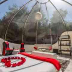 """Bulle Suite Glamour - Nous proposons l'exclusivité d'une Bulle Suite 1000% Glamour.  Cette Bulle Suite de 40 m² vous offre une vision panoramique à 180° et la vue des étoiles depuis le lit avec son toit transparent !  Dès votre arrivée, vous découvrez cette ambiance """"Glamour"""" avec ses plumes, ses meubles très """"Love"""", son lit design à leds sur lequel un jeté de pétales de roses vous attend. Sur la table, les coupes attendent que vous débouchiez votre bouteille de Vouvray Brut.  Tout est prévu pour votre confort : canapé et table basse , machine expresso, frigidaire, une salle de bain privée avec peignoirs, chaussons, produits d'accueil éco-bio et deux vélos aux pieds de la Bulle Suite ...(mais pas d'équipement de cuisson ni couverts).  Exceptionnel : sa climatisation permet de réguler la température intérieure lors des soirées fraîches ou de fortes chaleurs.  Vous avez accès gracieusement à la zone bien être située à l'accueil : un bain nordique pour deux et un jacuzzi pour deux.  Chaque espace indépendant et en libre accès vous offre ses deux fauteuils suspendus pour vous relaxer au bord de l'étang en toute intimité."""