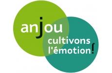 LOIRE A VELO EN ANJOU - Tourisme institutionnel Français