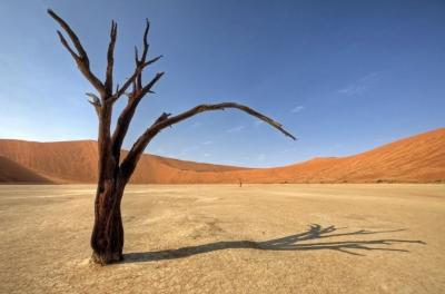 Le désert en Namibie