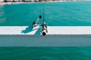 Activités outdoor : la pêche